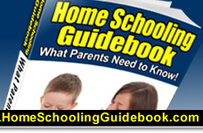 is homeschooling a better choice essay